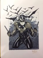 Nightwing NYCC commission by BrianVander