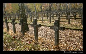 Forest of crosses 1 by Tindome