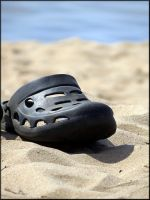 Still life with a croc... by Yancis