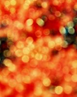 Bokeh by mt-stock