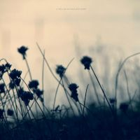 Losing you by PiaG