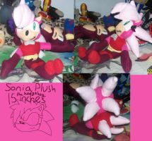 Sonia the hedgehog plush by AshleyFluttershy