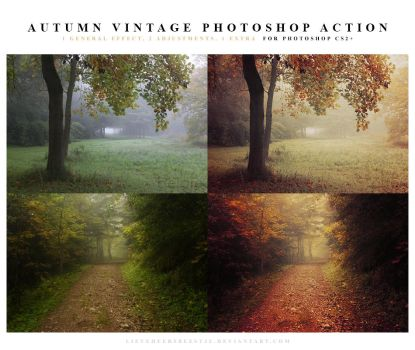 Autumn vintage Photoshop Action by lieveheersbeestje