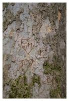 Love Tree by Tain0s