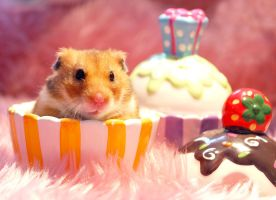Hamster Cupcake by emshh