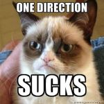 Grumpy Cat hates 1D by thereanimatedunknown