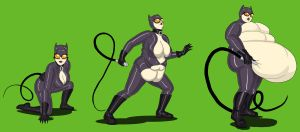Catwoman commission by theJiggly