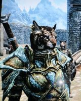 Riyunna the Khajit by AnarchyWolfKira
