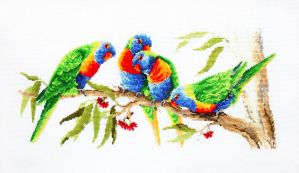 Colourful lorikeets by katialumik