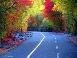 Fall on Provo Parkway by marsMGphotography