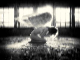 The Fallen Angel by Mrs-White