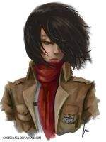 Mikasa - Attack on Titan  by castcuraga