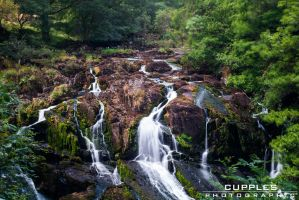 Swallow Falls by cupplesey