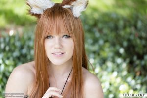 Horo Spice and Wolf 01 by thirdstop