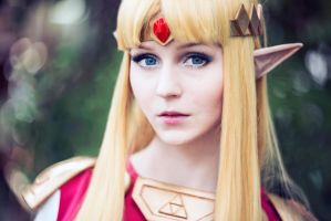 The Princess of Hyrule by ver1sa