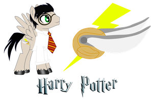 Harry Potter the Pegasus Pony by DracosDerpyHoof