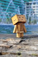 Danboard by gravicious