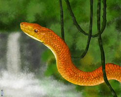 Everglades Rat Snake (Prize for Darkdeliverians) by Glaiceana