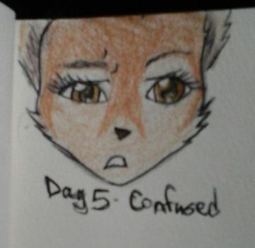 Day 5 - Confused by KyashaKitsune