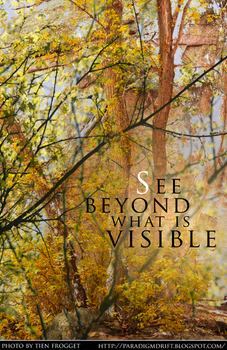 See Beyond What is Visible by tienlove