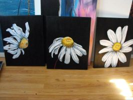 Daisies series by Emzoid