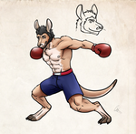 Boxing Roo by Svtx