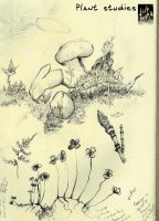 Sketchbook: Botanical 01 by Ahkward