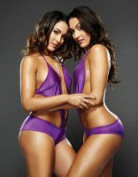 Bella Twins by barrymk100