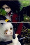 The Reaper and the Flowers by Airia-Kagami