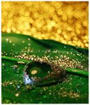 Green with Gold by GrotesqueDarling13