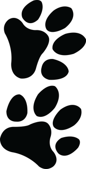 Paw Prints Tattoo by B-Southern