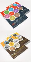 Multipurpose Product / Services Offer Flyer Vol 2 by Saptarang