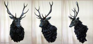 The Ravenstag by rcahern