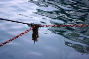 rusty chains by davulist