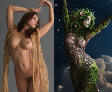 Girl Tree Before / After by Madness-of-Hamlet