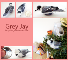Grey Jay - GIFT by Bittythings