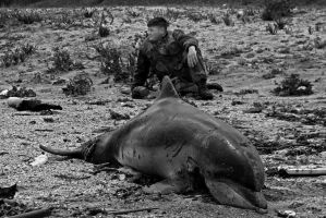 soldier and dead dolphin by emrebo
