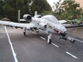 A-10 D waiting for take off by Krulos