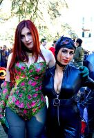 Poison Ivy e Catwoman by KillerGio