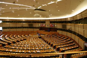European Parliament VI by friedapi