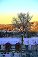 Winter on the Hill by Arsenid