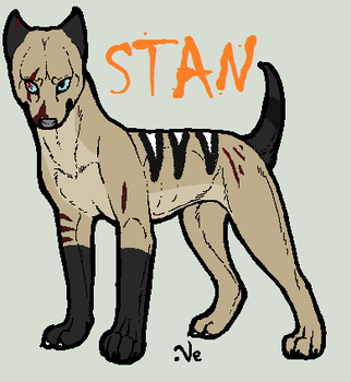 Stan Profile by TheSheeranKennel
