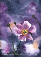 Flower from cosmos by Lillian-Bann