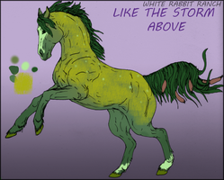 WRR Like The Storm Above (Oberon) by Nessbeast