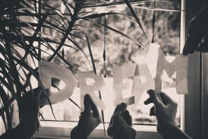 76/365 We all have dreams by photographybyteri