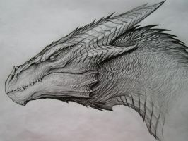 Dragon Sketch by TatianaMakeeva