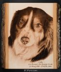 Dog Memorial Portrait - Handcrafted Woodburning by brandojones