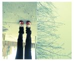 Snow today by thaissa