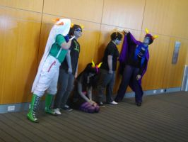 Nekocon pictures 36 by dogo987