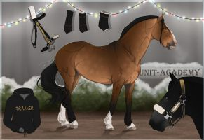 Traaker Import |Christmas GIFT 116 by BRls-love-is-MY-Live